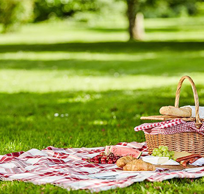 Picnics and Playgrounds